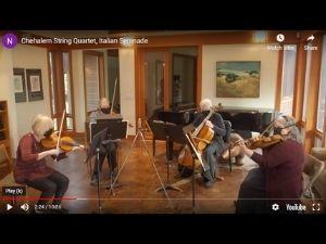 Newport Symphony Orchestra musicians
