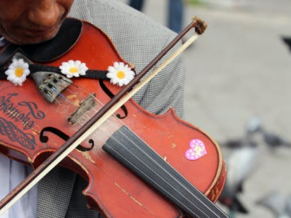 photo of violin with daisies on it